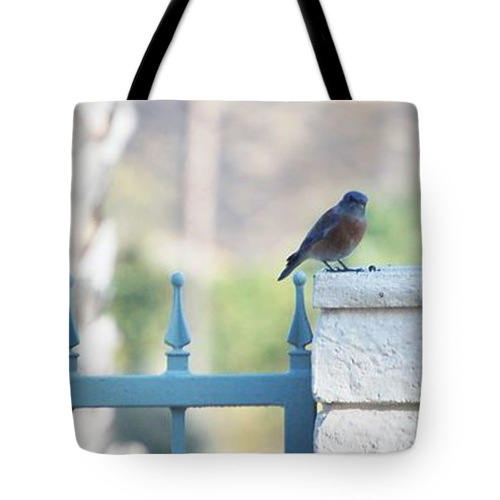 Linda Brody Tote Bag featuring the photograph Three Different by Linda Brody