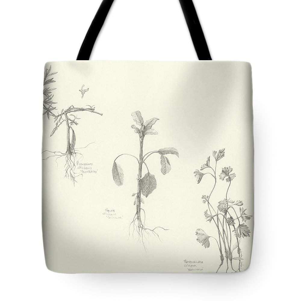 Herbs Tote Bag featuring the drawing Three Herbs by Laura Hamill