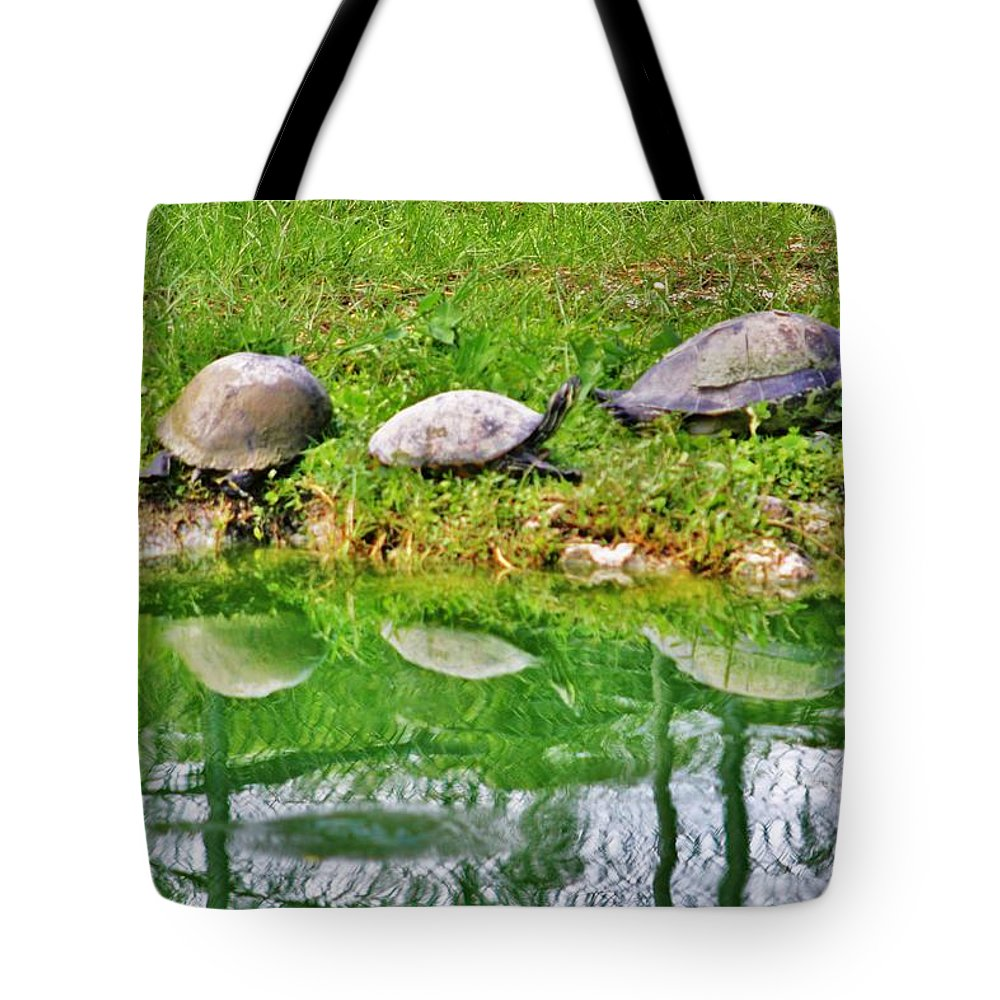 Everglades Tote Bag featuring the photograph Three In A Row by Chuck Hicks