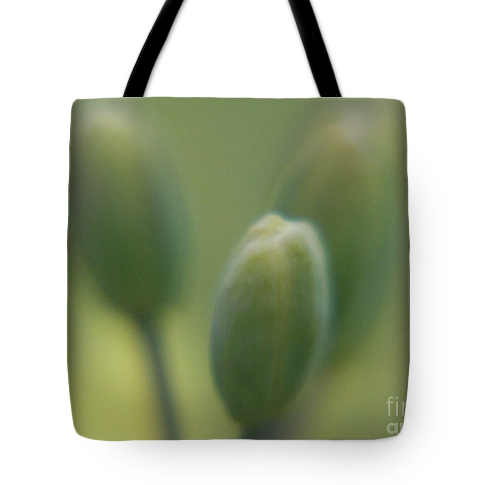Photography Tote Bag featuring the photograph Three Tenors by Jackie Farnsworth