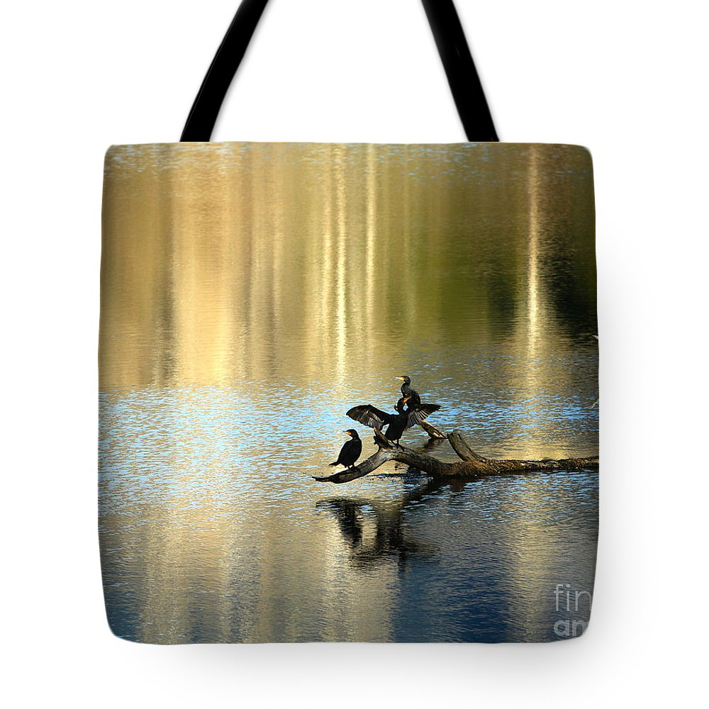 Cormorant Tote Bag featuring the photograph Go Your Own Way by Michelle Twohig