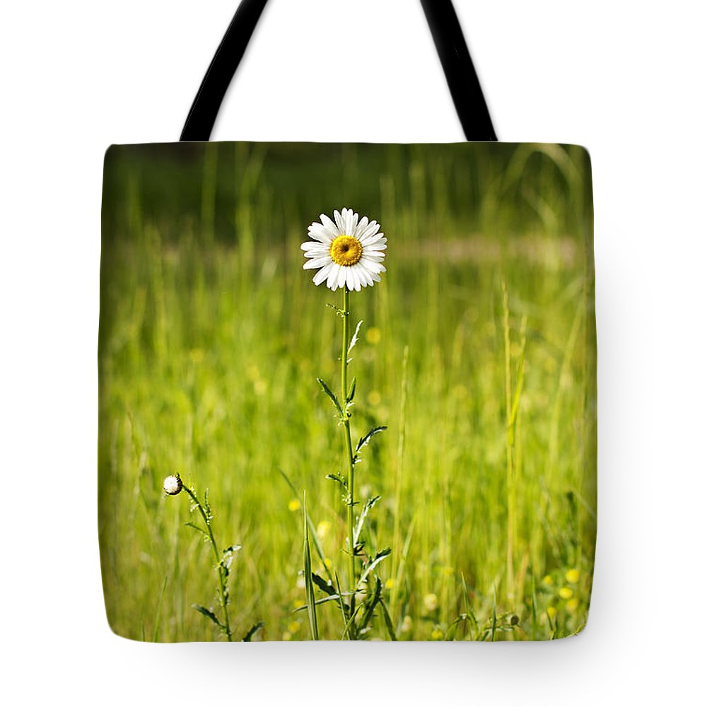 Nature Tote Bag featuring the photograph Thrive by Elisabete Companion