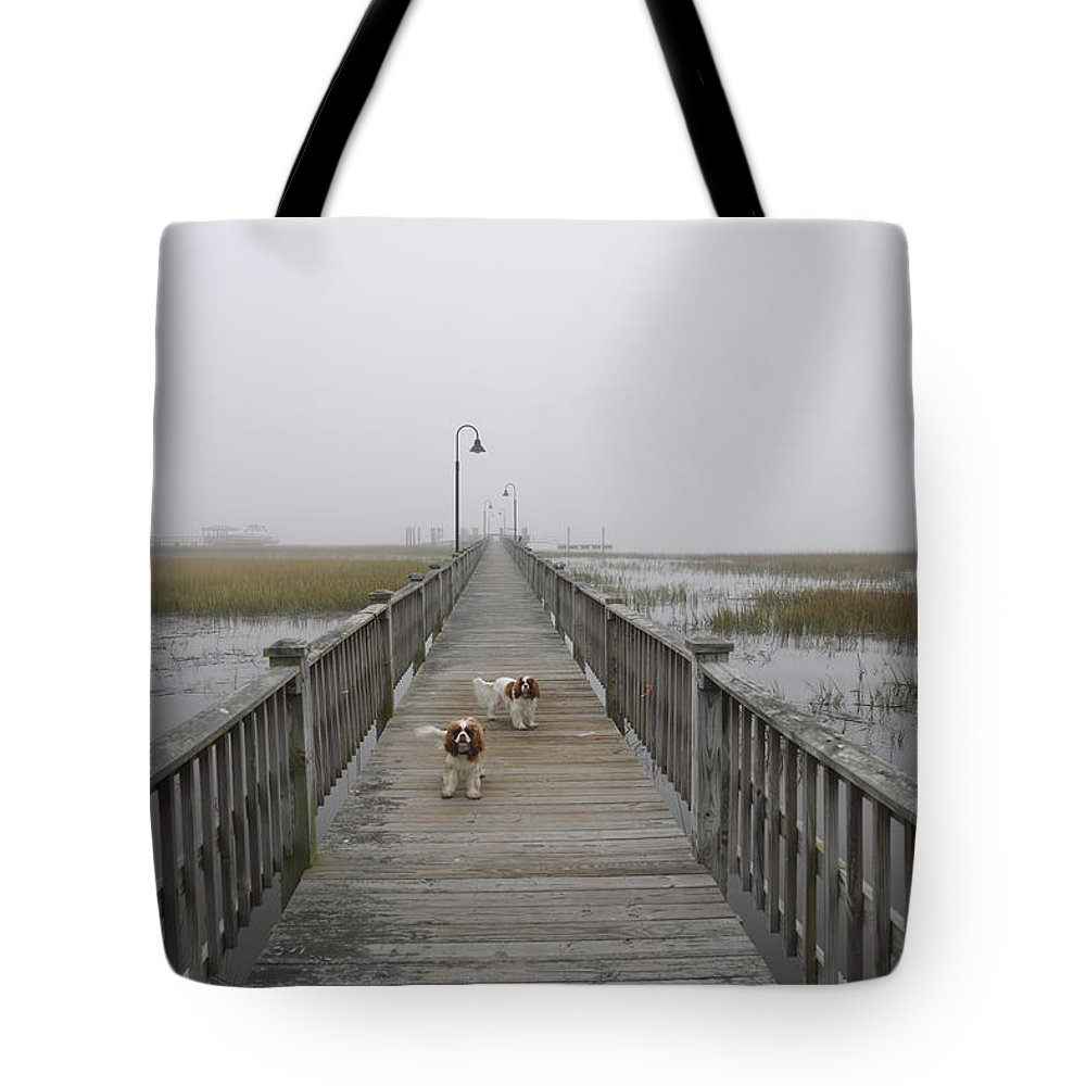 Fog Tote Bag featuring the photograph Through The Fog by Dale Powell