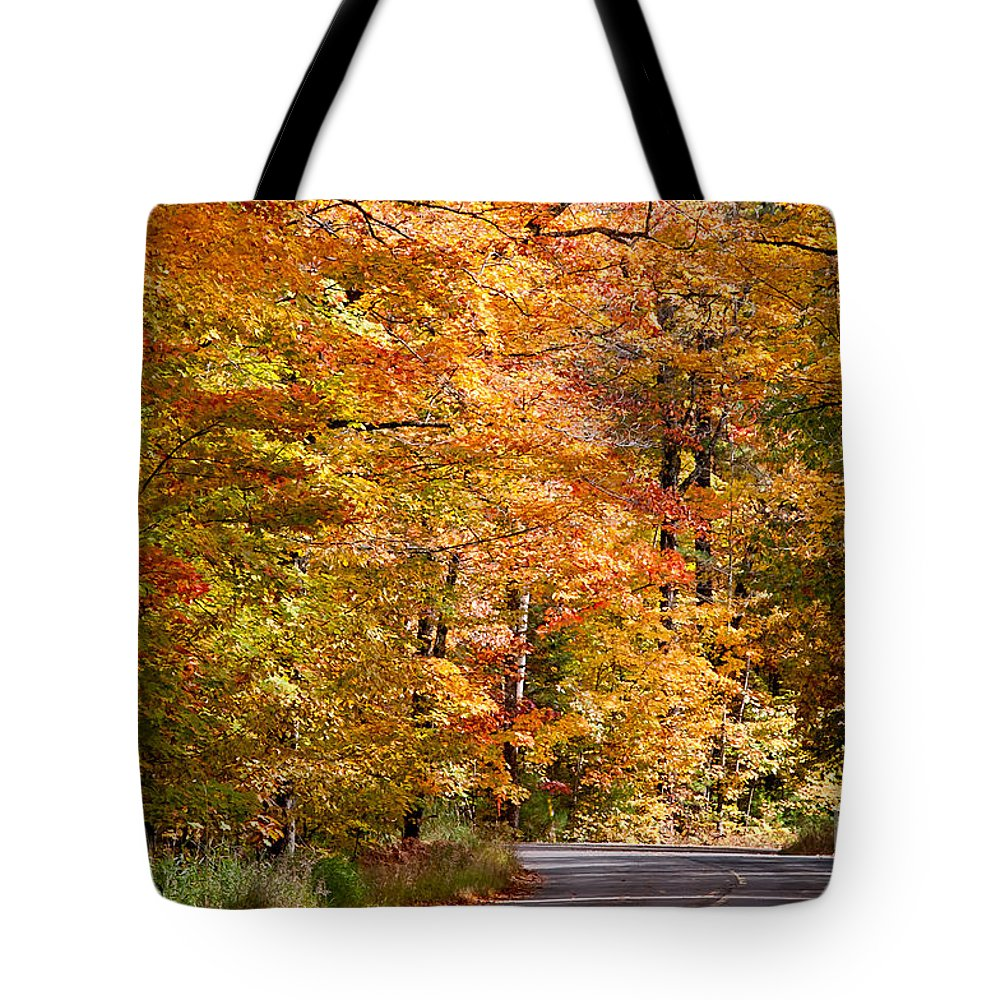 David Perry Lawrence Tote Bag featuring the photograph Through The Woods By D. Perry Lawrence by David Perry Lawrence