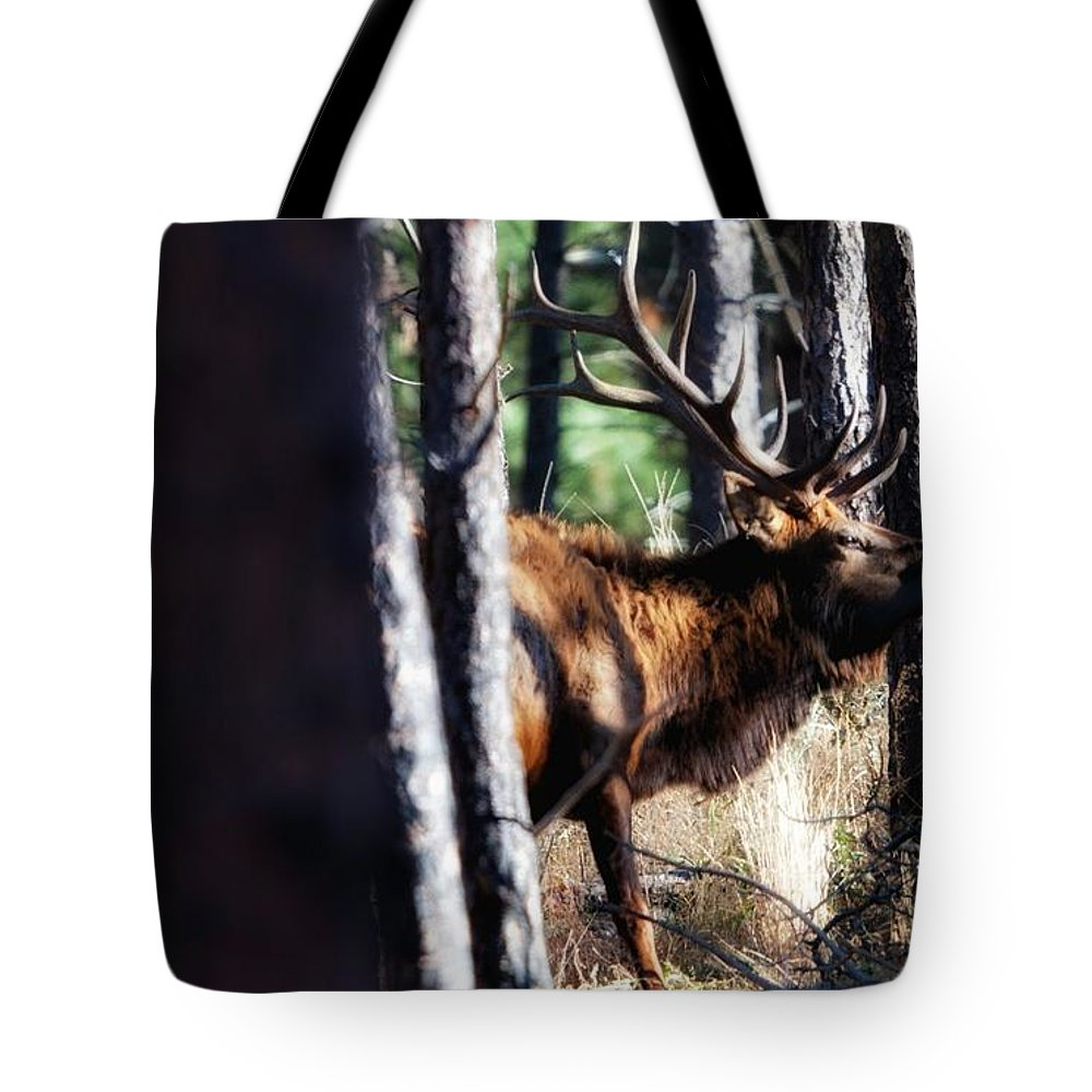 Elk Tote Bag featuring the photograph Thru The Trees by Donald J Gray