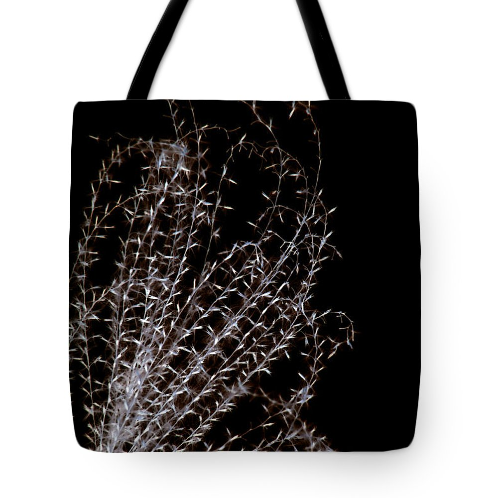 National Arboretum Tote Bag featuring the photograph Tickle by Carolyn Stagger Cokley
