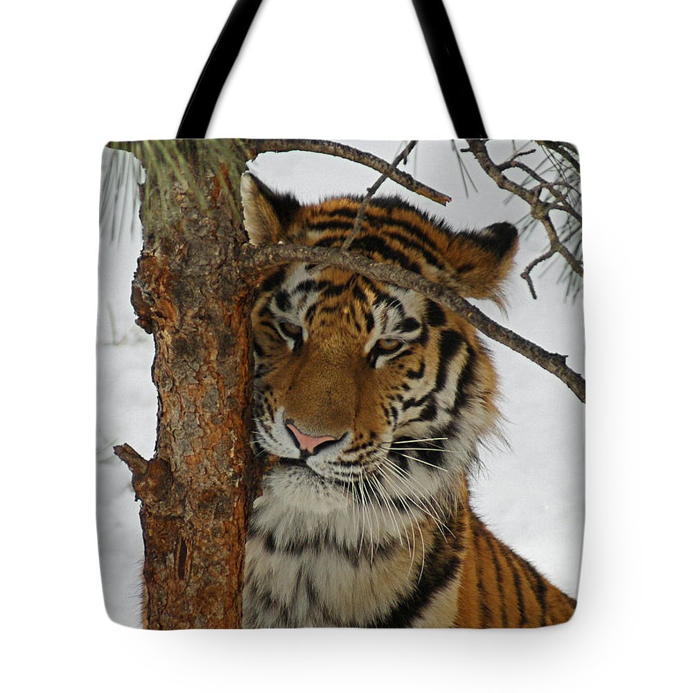 Tiger Tote Bag featuring the photograph Tiger 2 by Ernie Echols