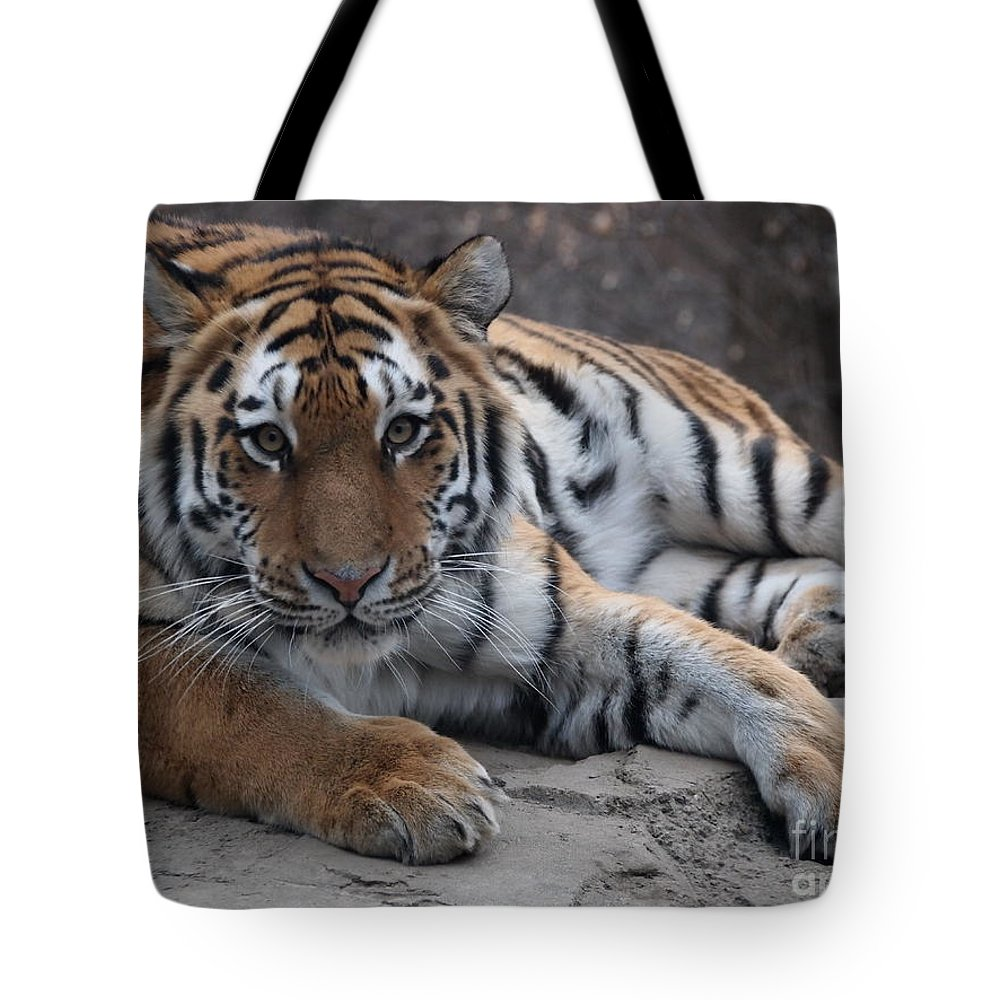 Tiger Tote Bag featuring the photograph Tiger Love by Jennifer Craft