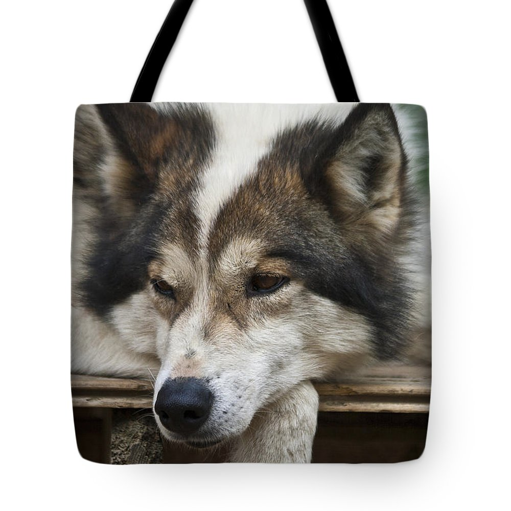 Heiko Tote Bag featuring the photograph Time For A Rest by Heiko Koehrer-Wagner
