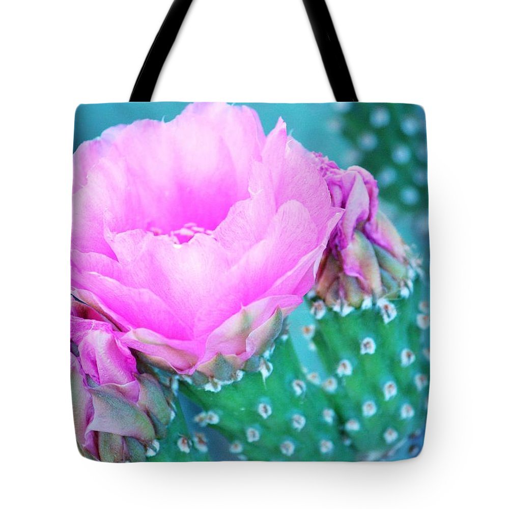 Cactus Tote Bag featuring the photograph Time To Shine by Marcia Breznay