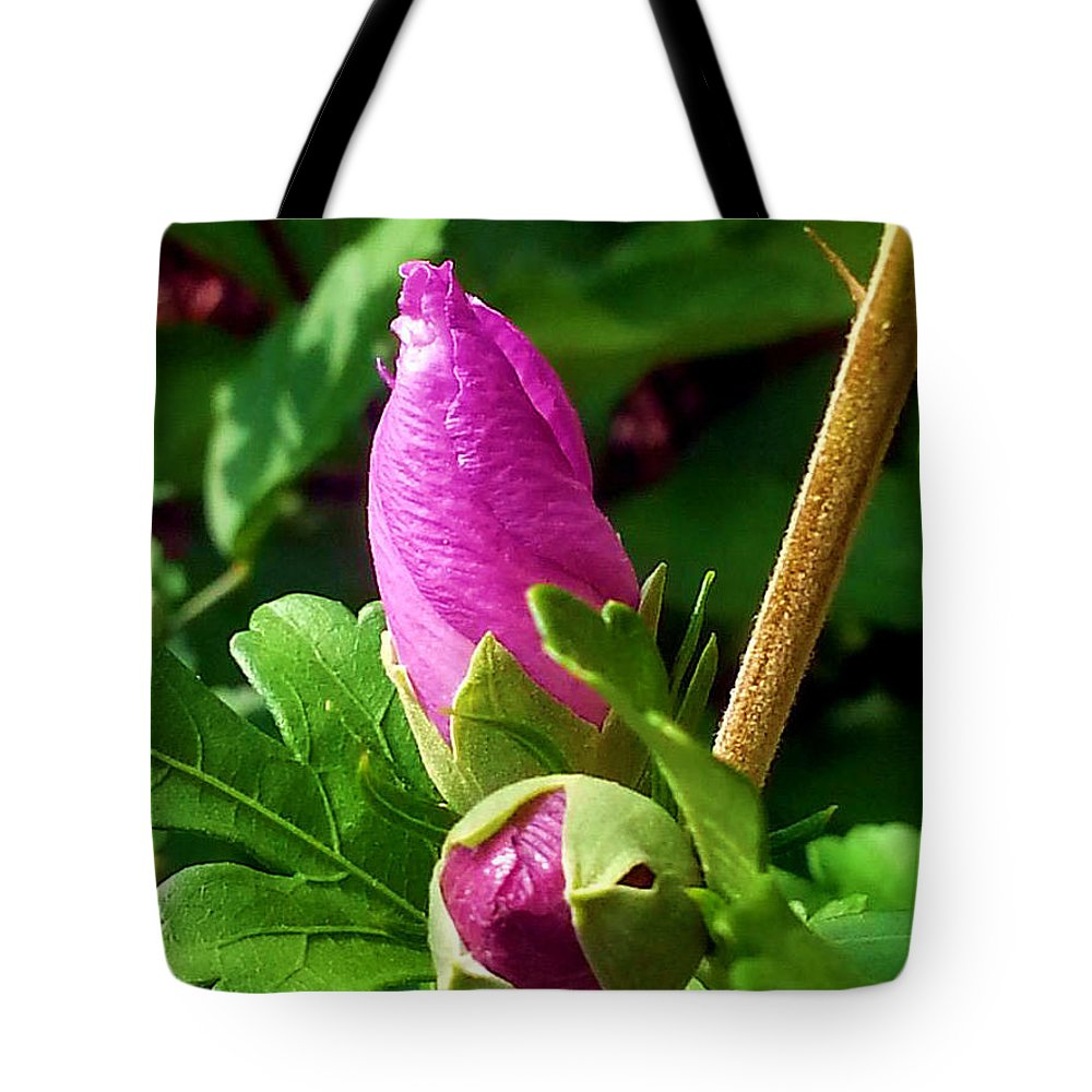 Time Will Come Tote Bag featuring the photograph Time Will Come by Jessica Tolemy