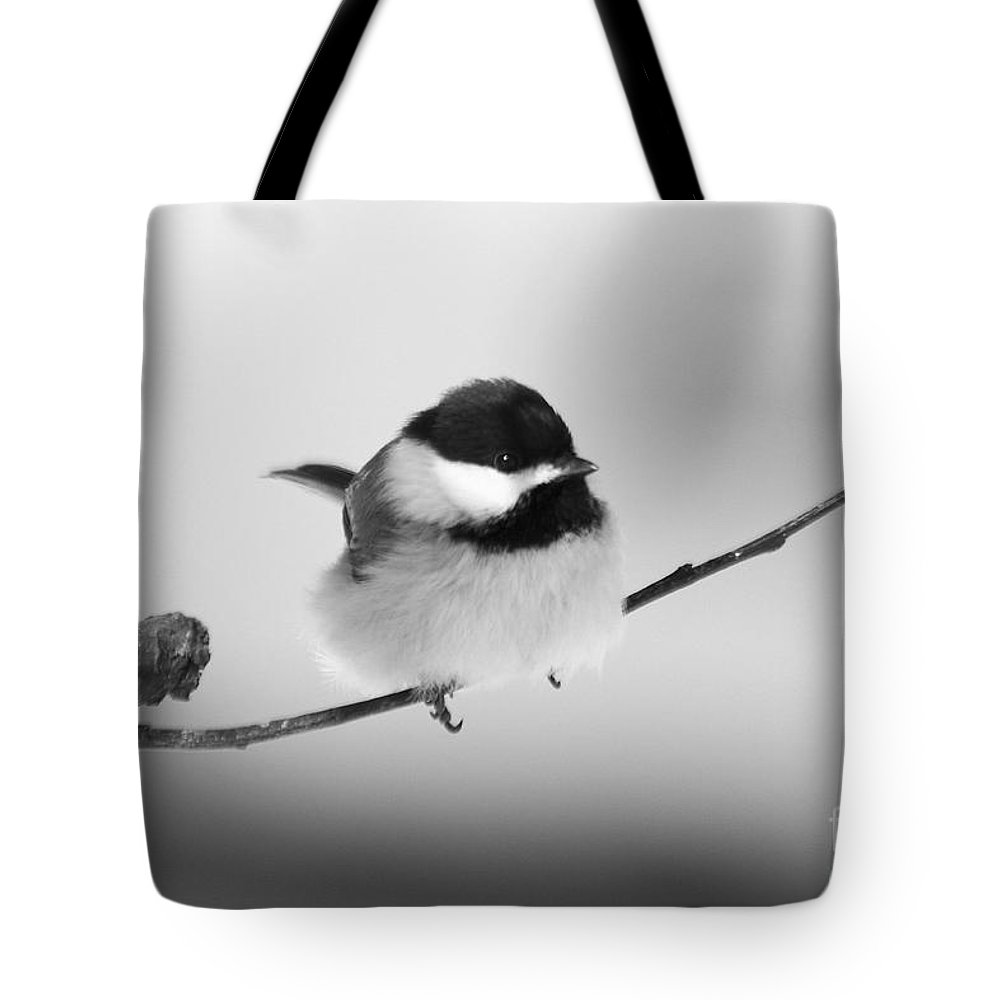 Bird Tote Bag featuring the photograph Tiny Branch With Guest by Deborah Benoit