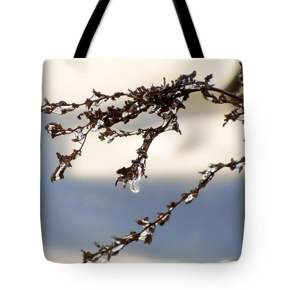 Tiny Icicles Tote Bag featuring the photograph Tiny Icicles by Cynthia Woods