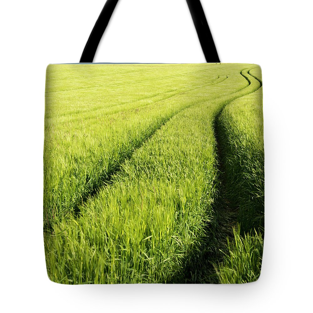 Scenics Tote Bag featuring the photograph Tire Tracks In Grain Field by Thomas Winz