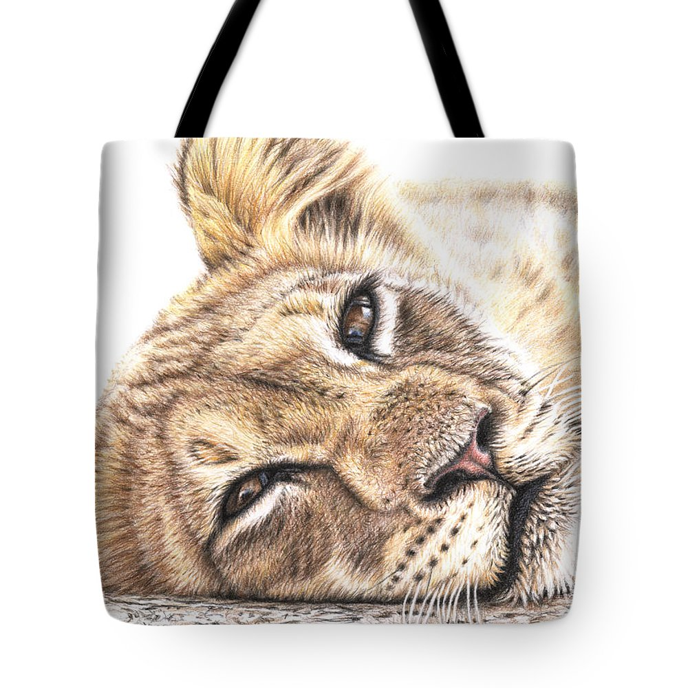 Lion Tote Bag featuring the drawing Tired Young Lion by Nicole Zeug