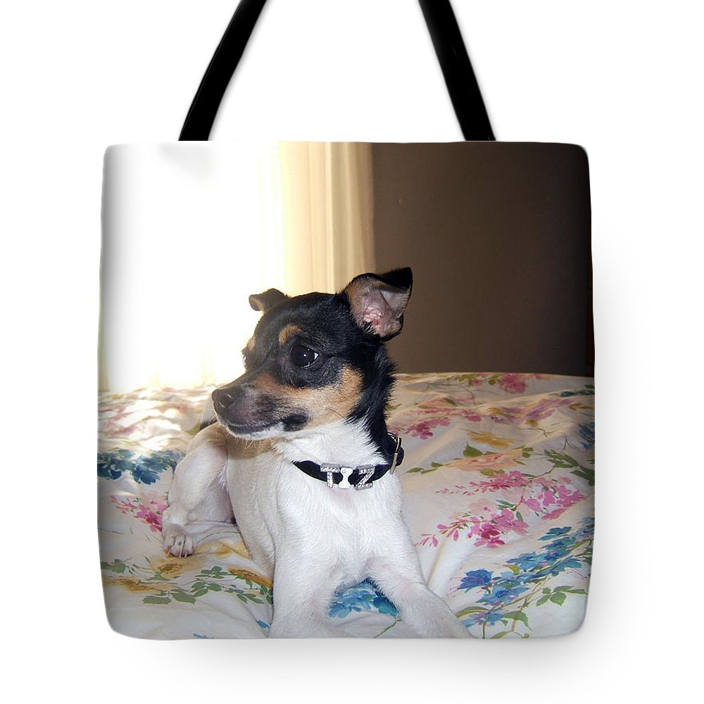 Dog Tote Bag featuring the photograph 'tis Herself by Barbara McDevitt