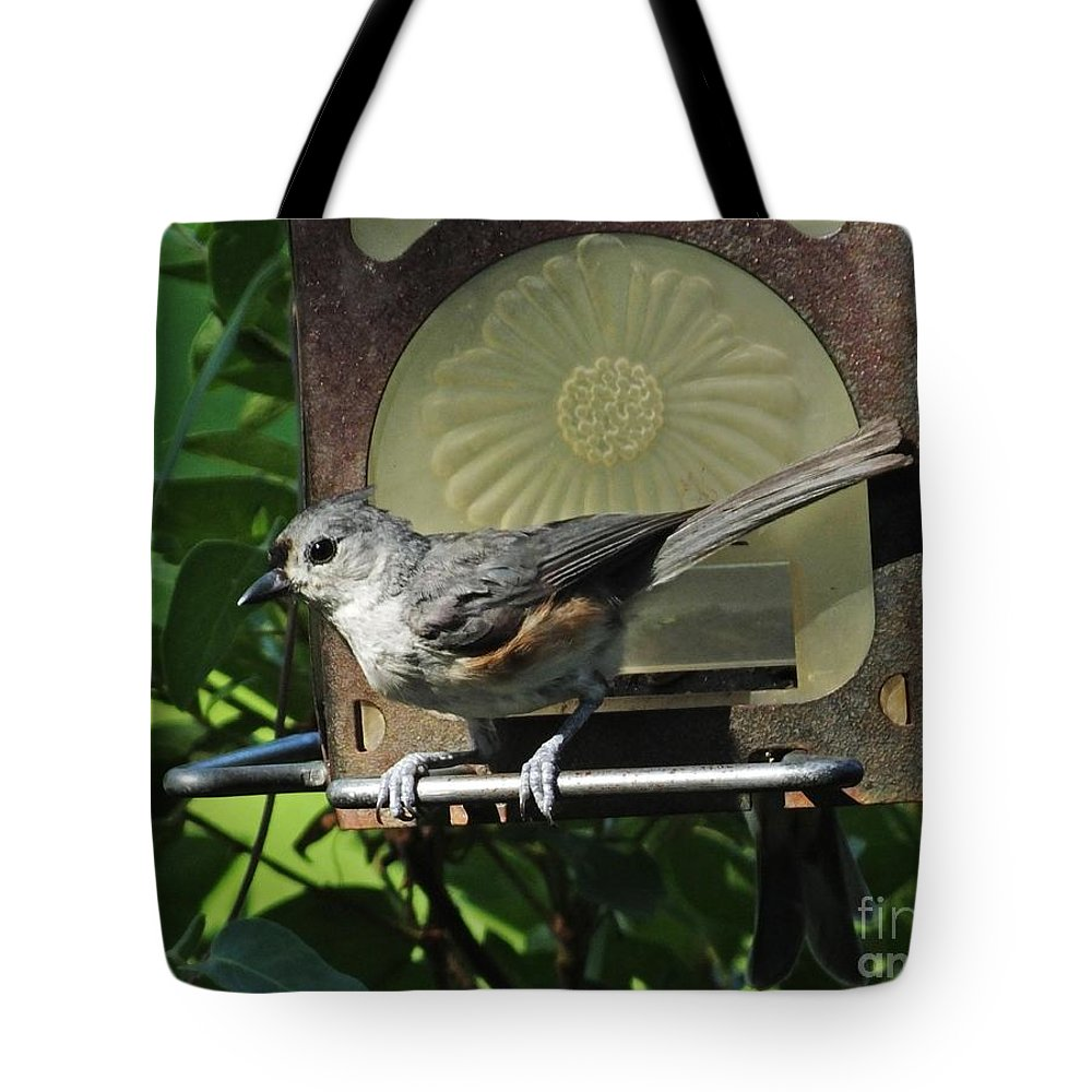 Titmouse Tote Bag featuring the photograph Titmouse 2 by Lizi Beard-Ward