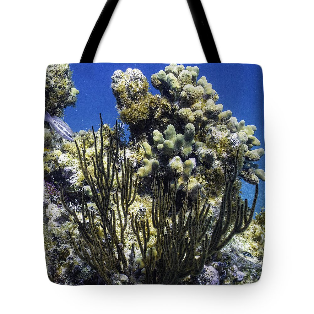 Ocean Tote Bag featuring the photograph To The Sky by Lynne Browne