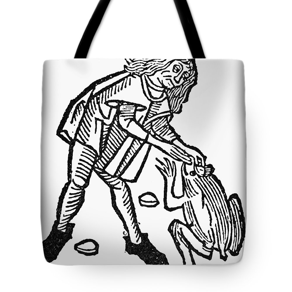 1491 Tote Bag featuring the photograph Toadstone, 1491 by Granger