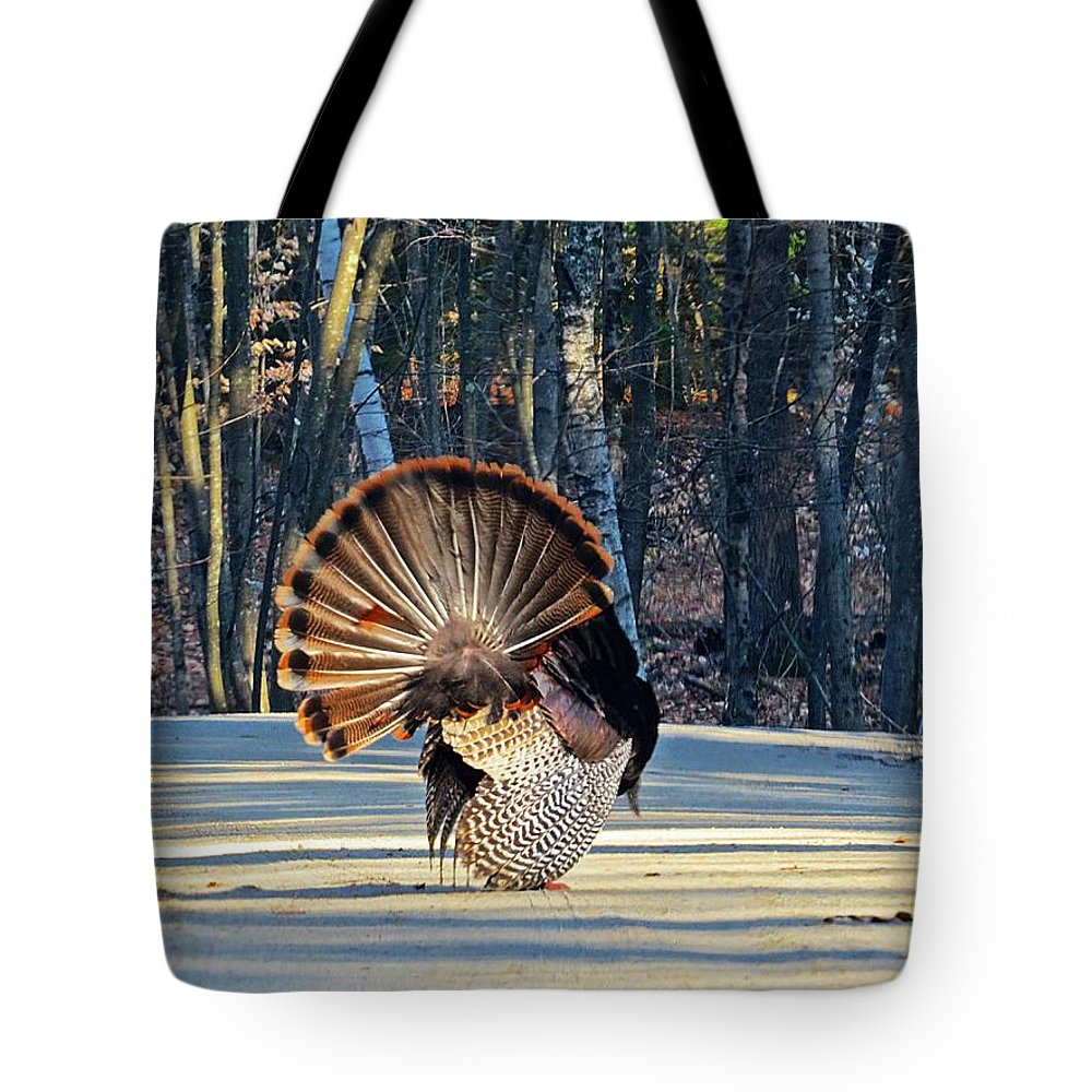 Tom Turkey Tote Bag featuring the photograph Tom Turkey Fan by MTBobbins Photography