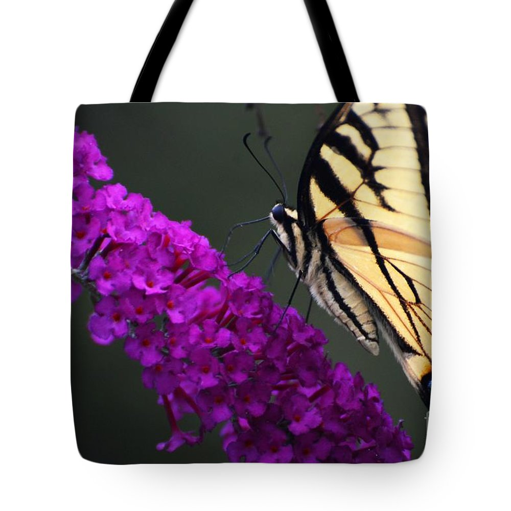 Butterfly Tote Bag featuring the photograph Too Close For Comfort by Judy Wolinsky