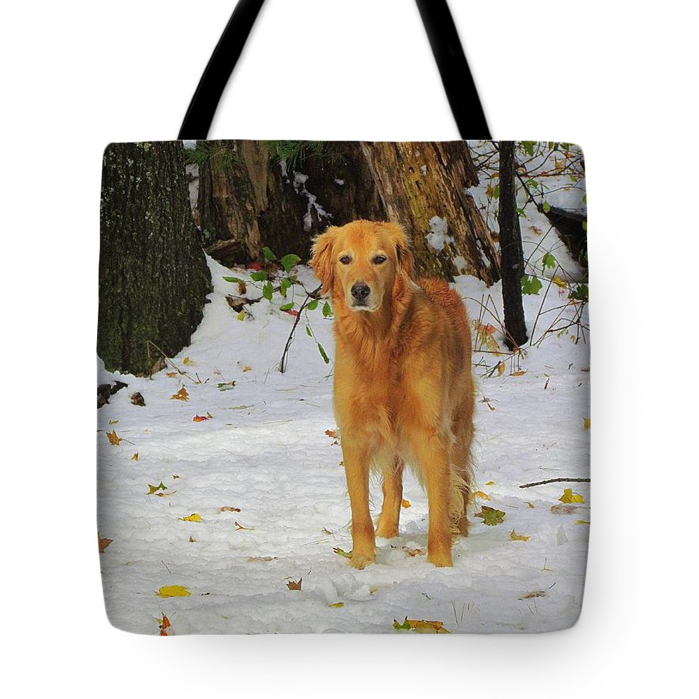 Golden Retriever Tote Bag featuring the photograph Too Early For Snow Mama by Elizabeth Dow