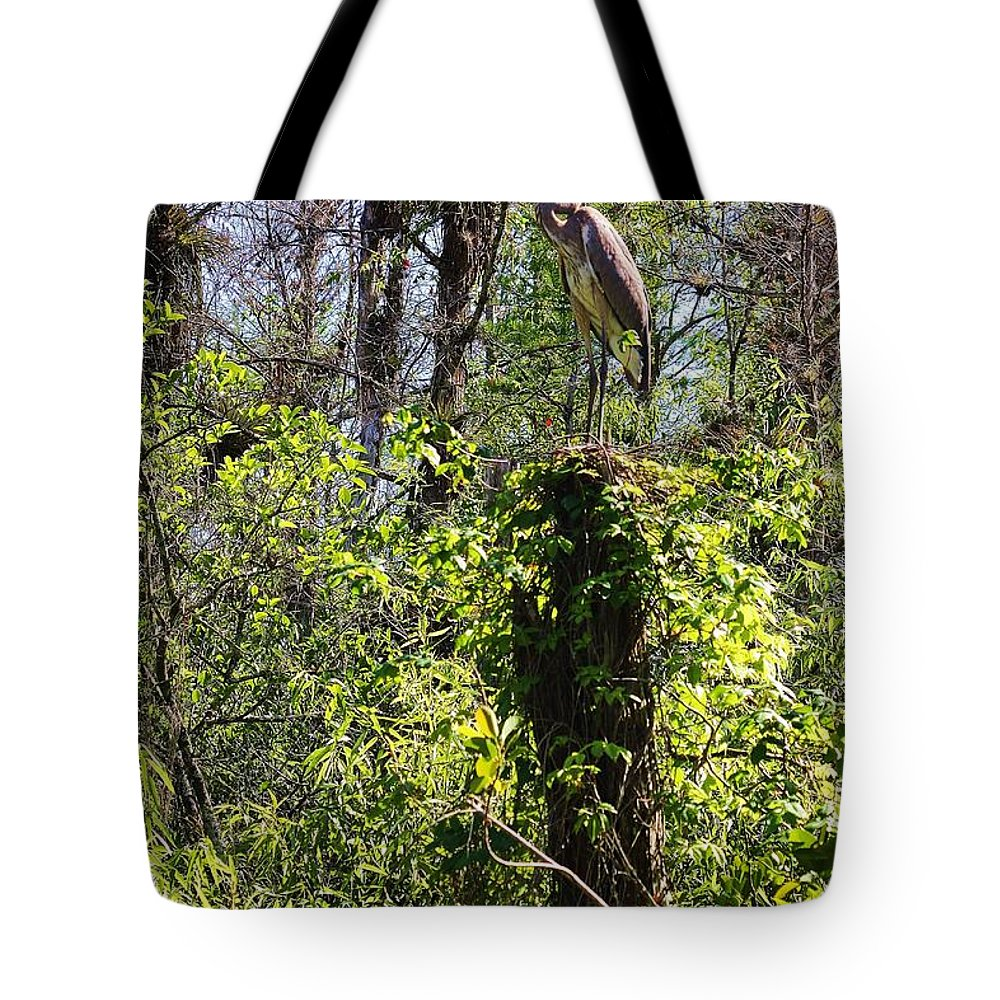 Everglades Tote Bag featuring the photograph Top Of The Glades by Chuck Hicks