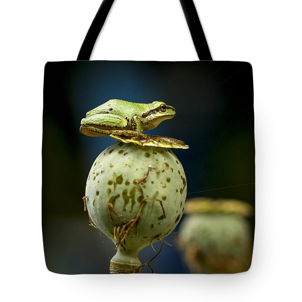 Amphibian Tote Bag featuring the photograph Topper by Jean Noren