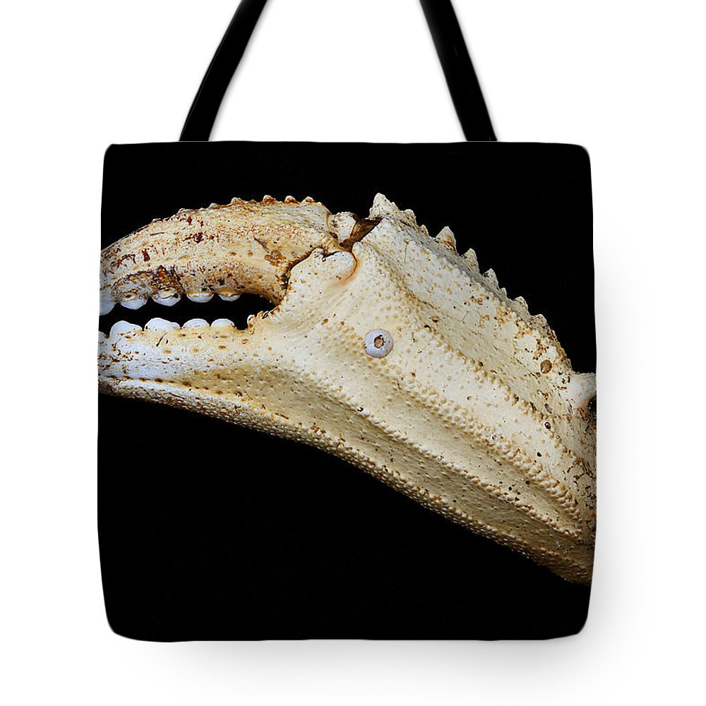 Crab Tote Bag featuring the photograph Toucan Crab Claw by Robert Woodward
