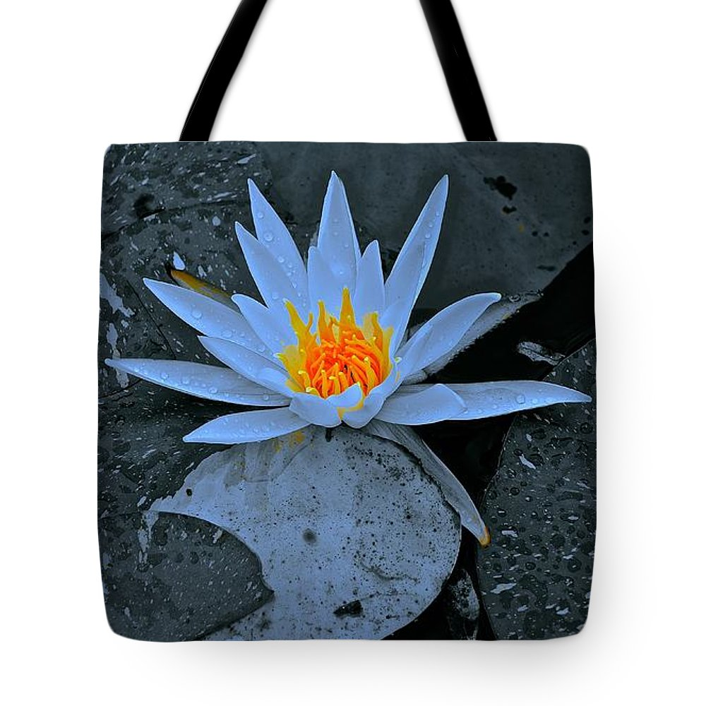 Monochrome Tote Bag featuring the photograph Touch Of Gold In Lily by Tim G Ross