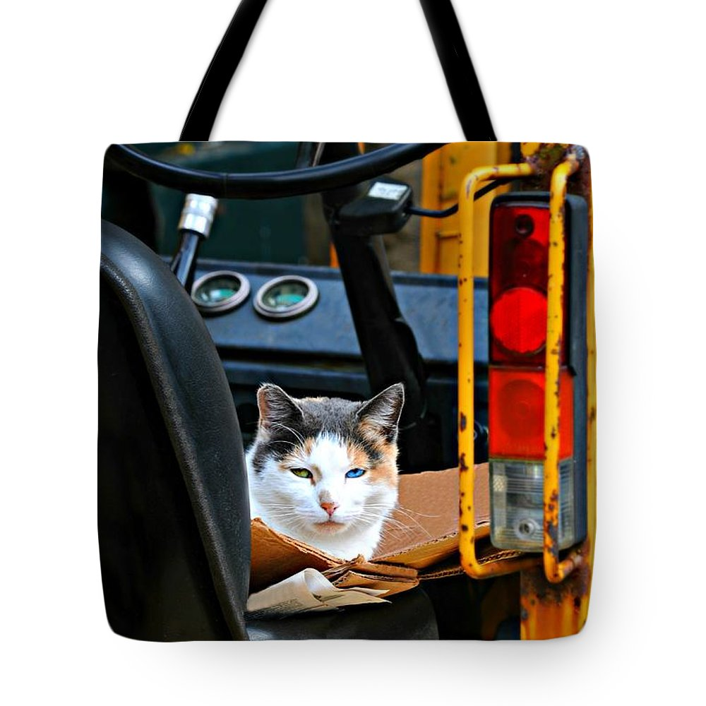 Feline Tote Bag featuring the photograph Tractor Cat by Diana Angstadt