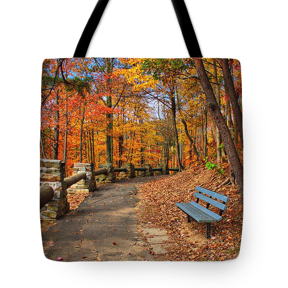 Hawks Nest State Park Tote Bag featuring the photograph Trail Of Gold by Mary Almond