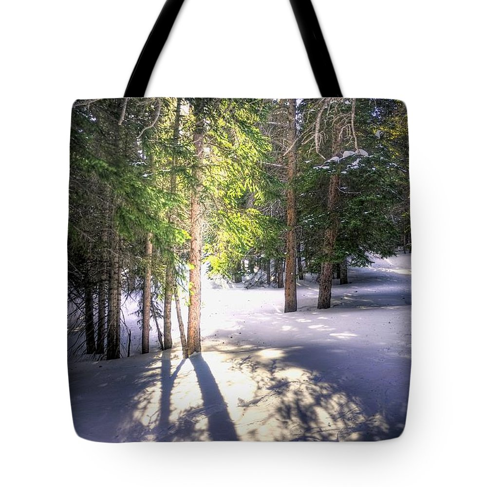 Rocky Tote Bag featuring the photograph Trail To Bear Lake 4490 by Jerry Sodorff