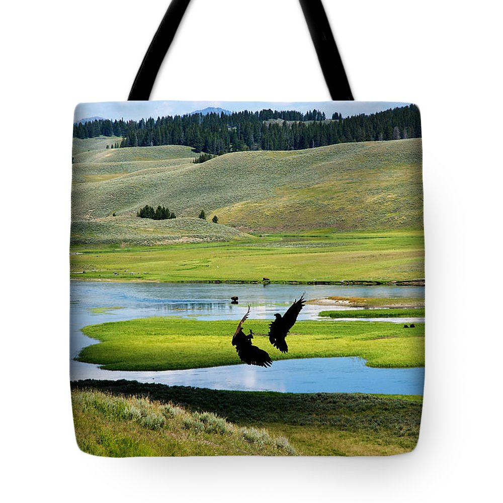 Eagles Tote Bag featuring the photograph Training Ground Eagles by Randall Branham