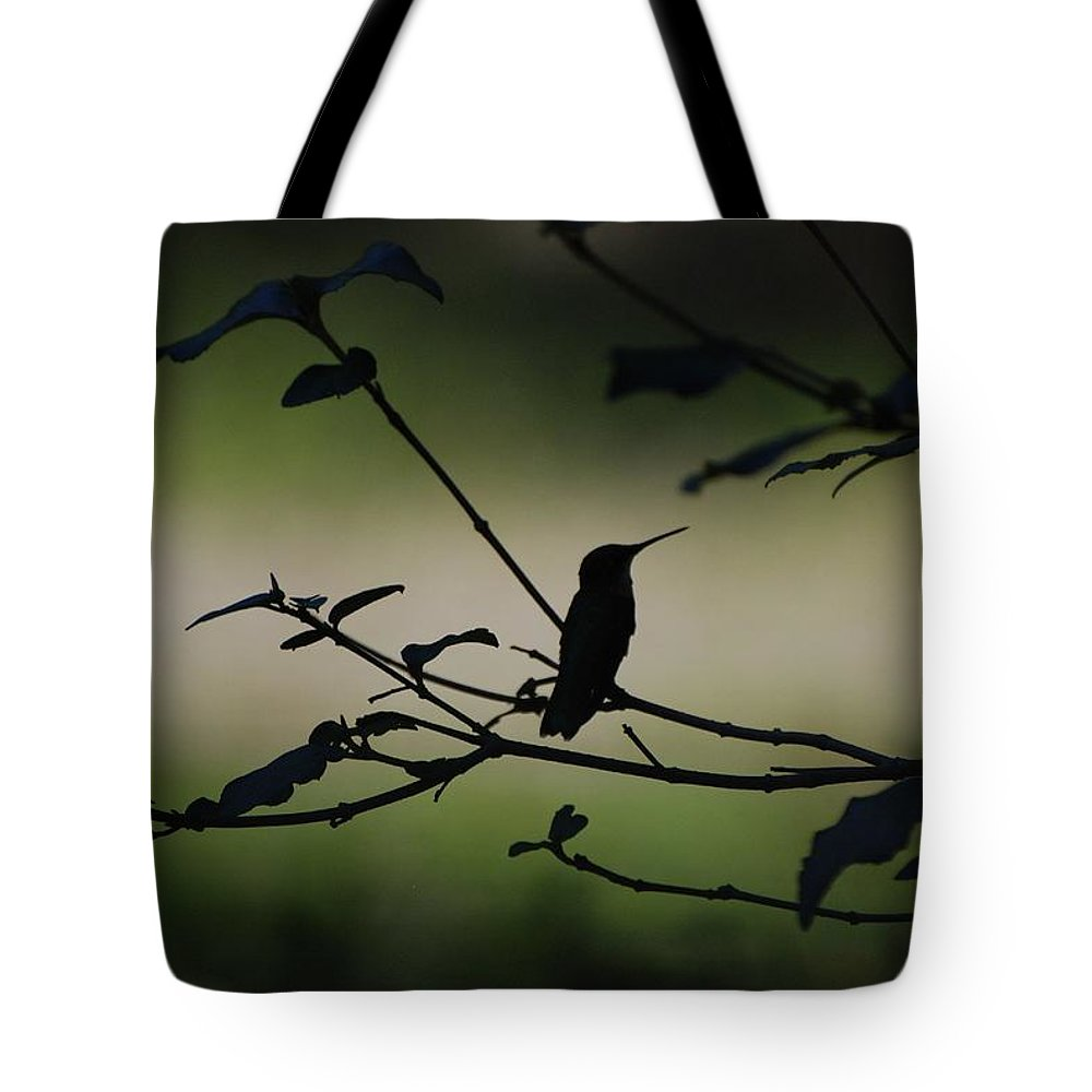 Nature Tote Bag featuring the photograph Tranquility by Amy Porter