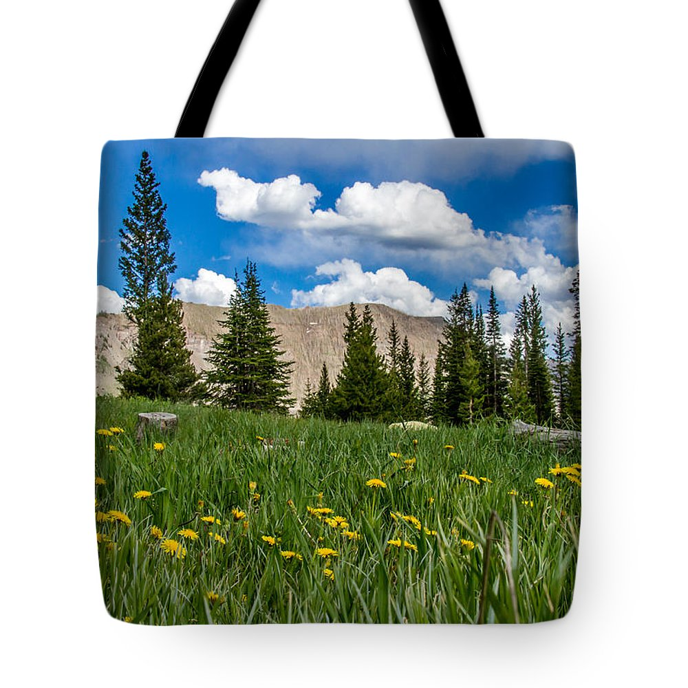 Trappers Lake Tote Bag featuring the photograph Trappers Lake Meadow by Jeff Stoddart