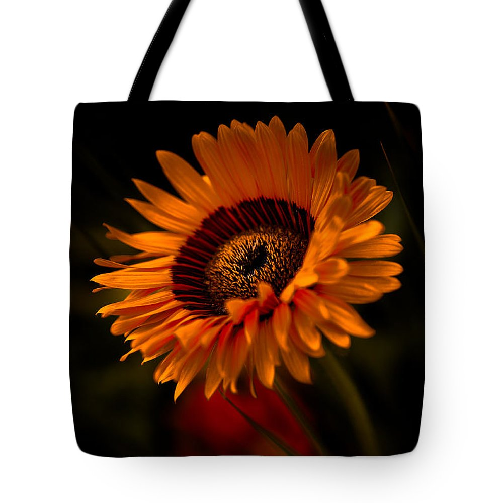 Asteraceae Family Tote Bag featuring the photograph Treasure Flower by Venetta Archer