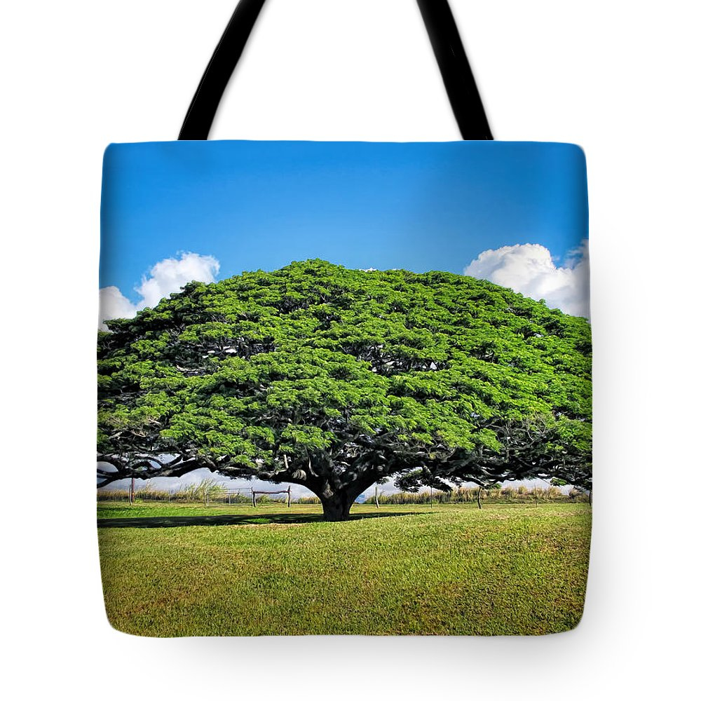 Hawaii Tote Bag featuring the photograph Tree 10 by Dawn Eshelman