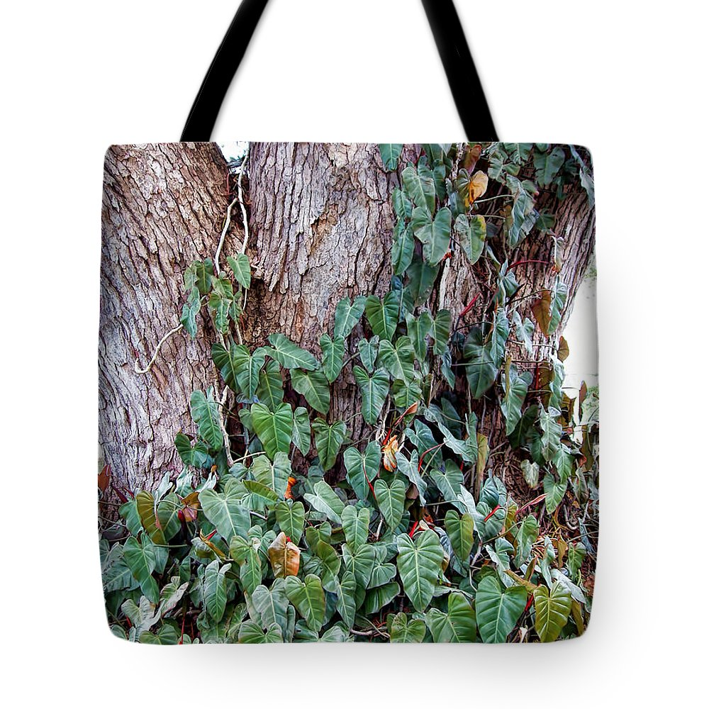 Hawaii Tote Bag featuring the photograph Tree 4 by Dawn Eshelman