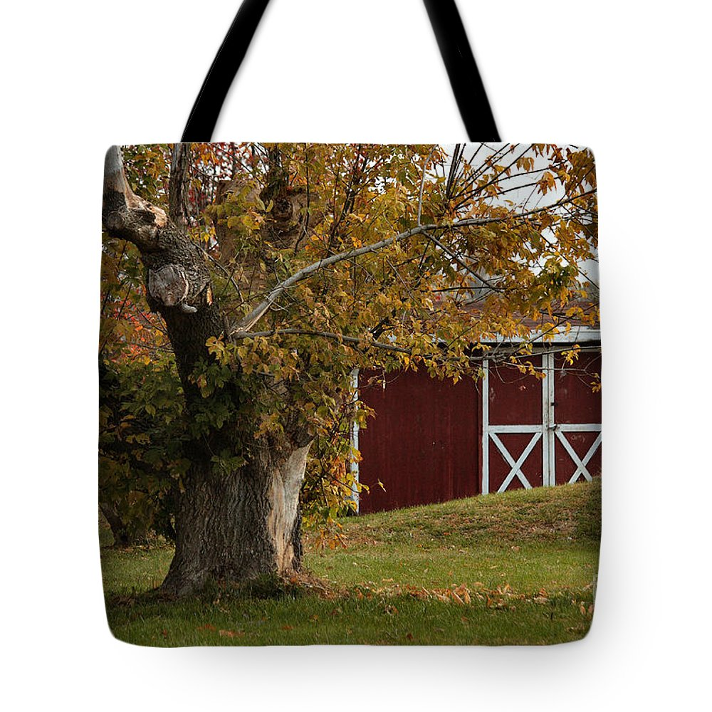 Autumn Tote Bag featuring the photograph Tree And Red Barn by Luv Photography