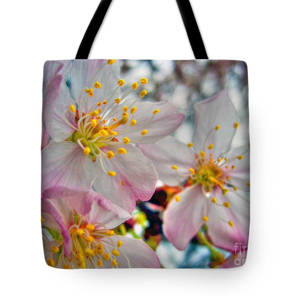 Cherry Tote Bag featuring the photograph Tree Blossom by Nina Ficur Feenan