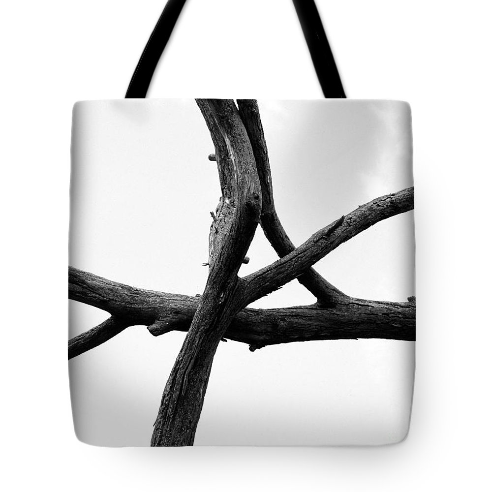 Dried Tree Branch Tote Bag featuring the photograph Tree Branch Art by Tina M Wenger