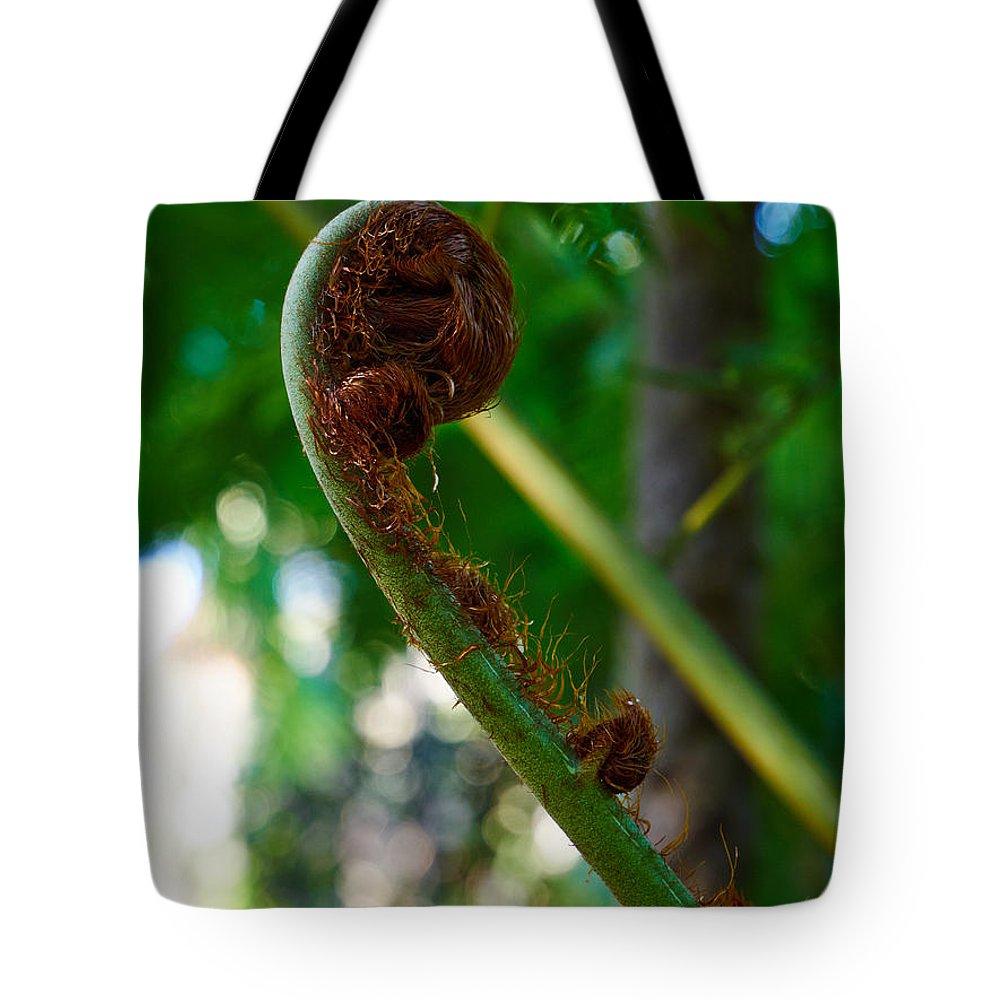 Atlantic Ocean Tote Bag featuring the photograph Tree Fern by Jouko Lehto