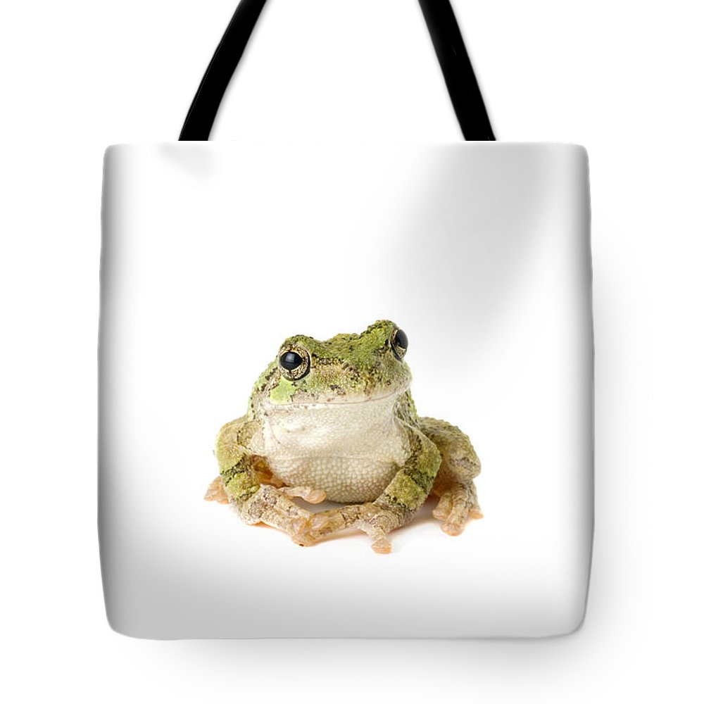 Amphibian Tote Bag featuring the photograph Tree Frog Pensive by SAJE Photography