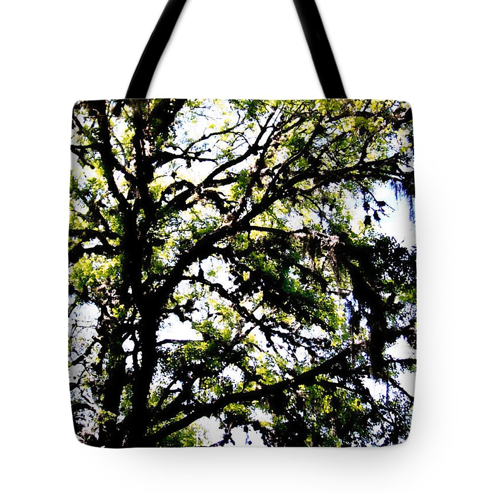 Tree Tote Bag featuring the photograph Tree In Blue Ridge Mountains by Glenn Aker