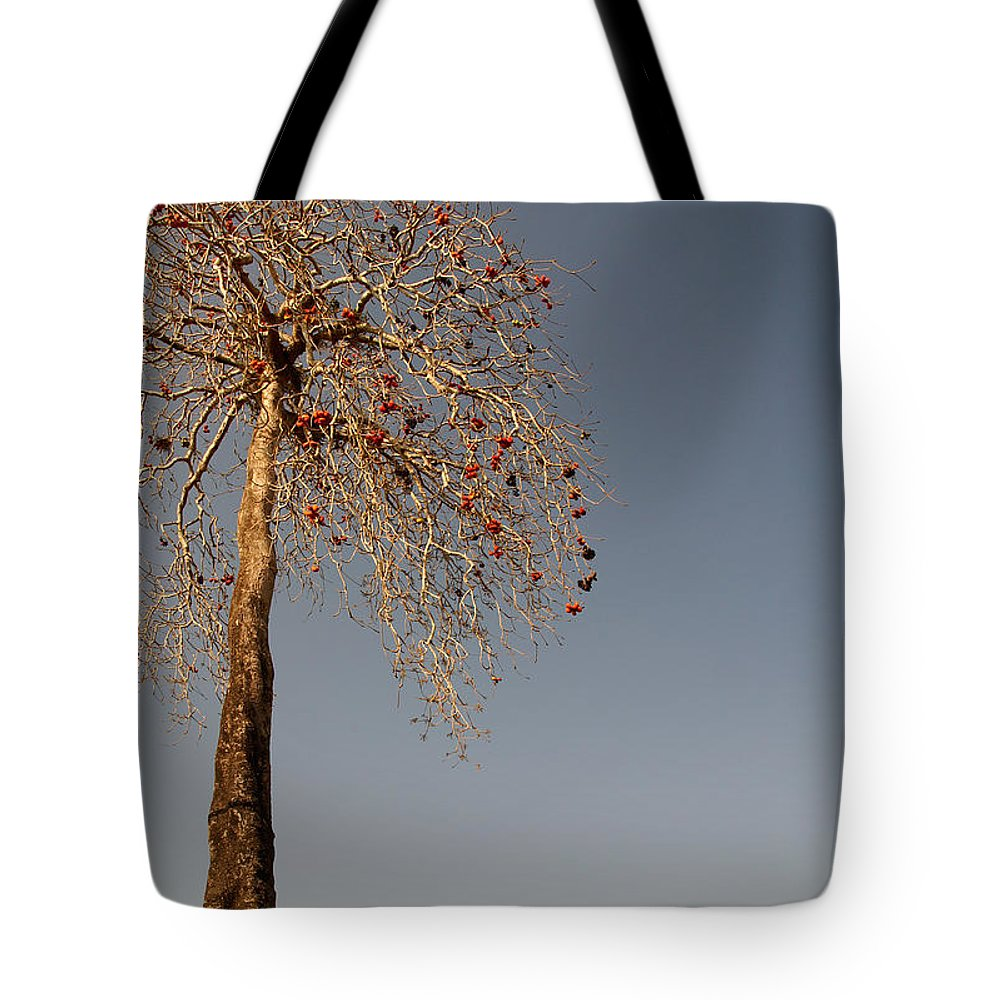 Colva Tote Bag featuring the digital art Tree In India by Carol Ailles