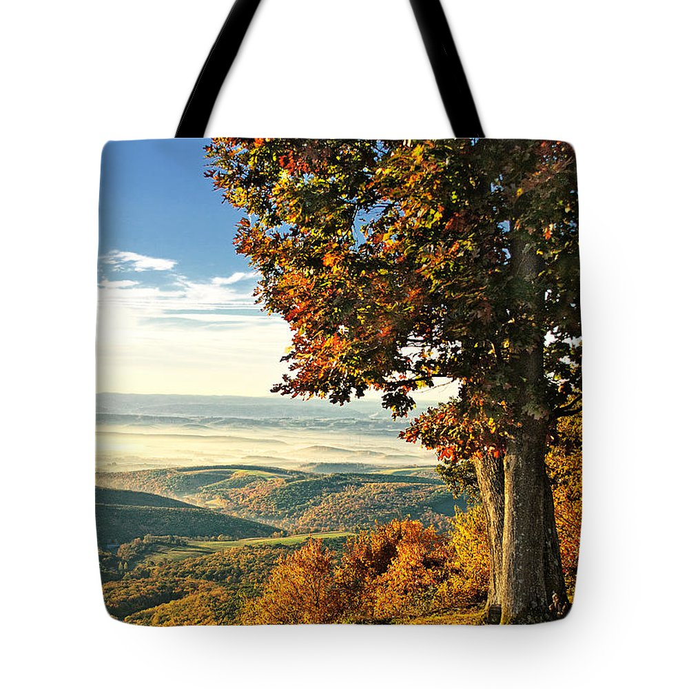 Vista Tote Bag featuring the photograph Tree Overlook Vista Landscape by Timothy Flanigan