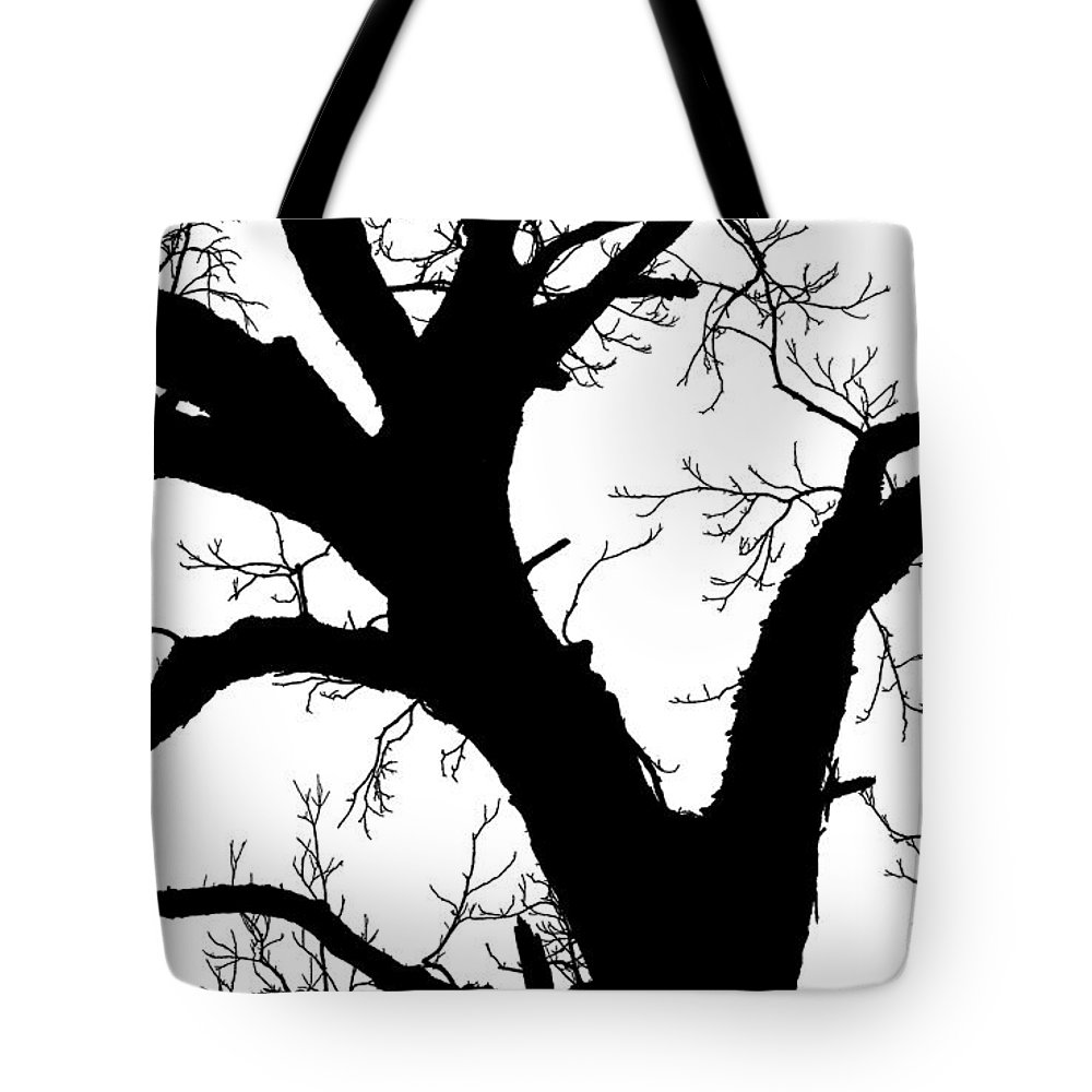 Trees Tote Bag featuring the photograph Tree Silhouette by Jim Smith
