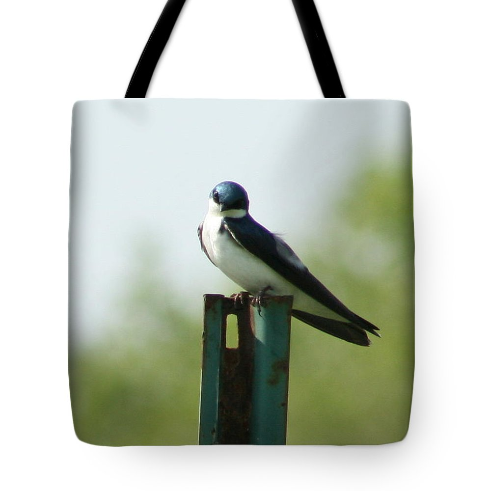Tree Swallow Tote Bag featuring the photograph Tree Swallow Wink by Neal Eslinger