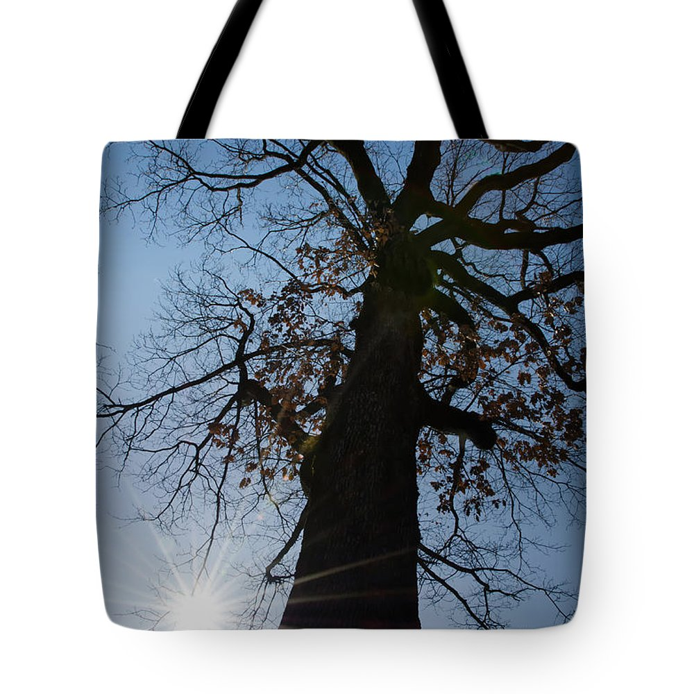 Tree Tote Bag featuring the photograph Tree With Sun by Mats Silvan